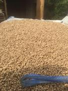 I sell granules from alfalfa, wood, straw, husk, pulp
