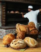 Работа в Польше на Пекарню помощник пекаря